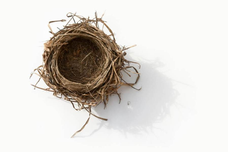 Surviving the empty nest after dropping your kid at college