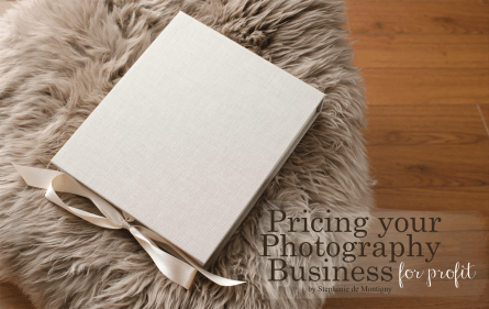 how-to-price-pricing-your-photography-business-for-profit-folio-box-matted-prints-sheep-skin-fur