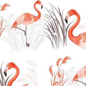 StephanieDesbenoit-poster-birds-flamingo-1