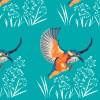 StephanieDesbenoit-poster-birds-kingfisher-blue-1