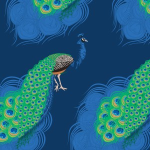 StephanieDesbenoit-poster-birds-peacock-blue-1