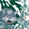 StephanieDesbenoit-poster-wildworld-whiteforest-0
