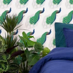 StephanieDesbenoit-wallpaper2-birds-peacock-white-3