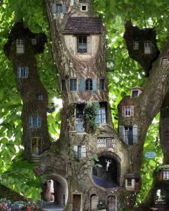 Tree condos
