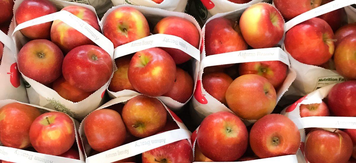 Healthy Fall Produce Picks