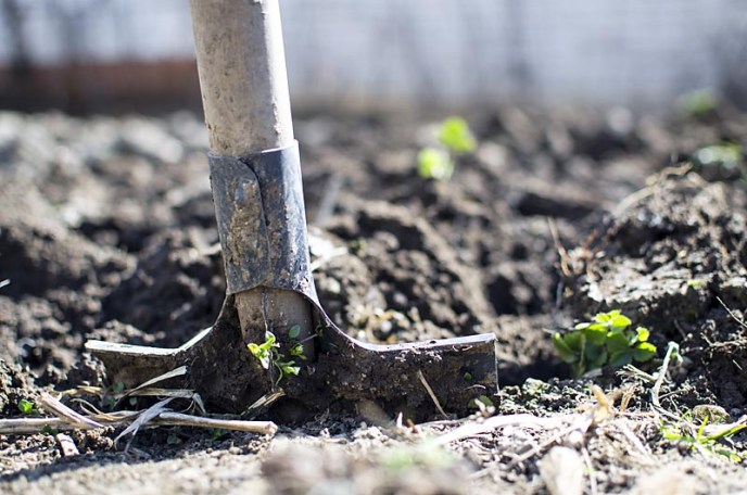 Healthy Soil soaks up extra rainfall and helps prevent runoff