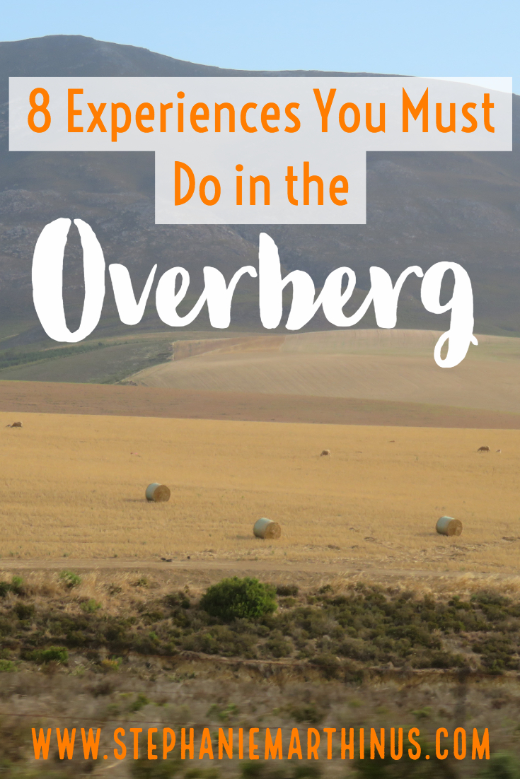 8 Experiences You Must Do in the Overberg
