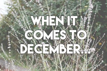 When it comes to December... // stephanieorefice.net