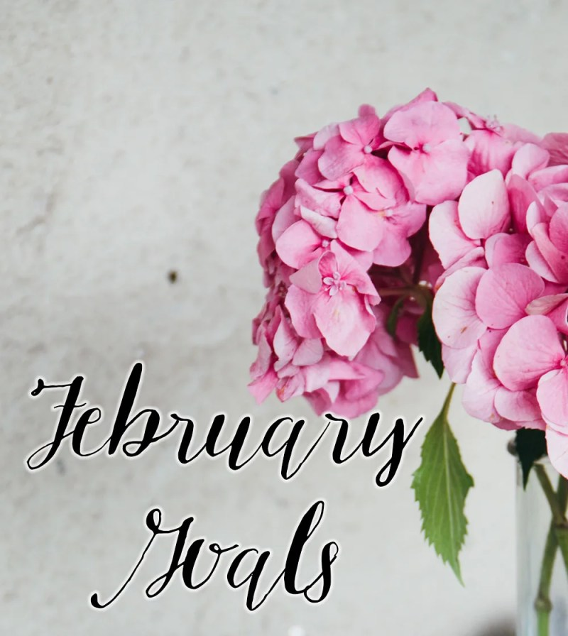 February Goals // stephanieorefice.net