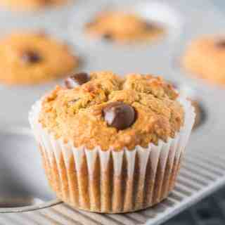 Coconut Flour Chocolate Chip Muffins in a pan with one removed and in white baking cup.