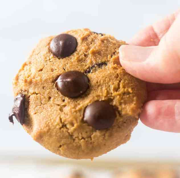 Holding one Coconut Flour Chocolate Chip Cookie in hand