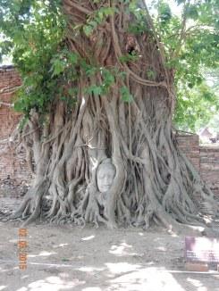 travel-guide-ayutthaya-thailand-wat-maha-that-6