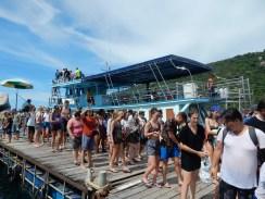 snorkeling-organizedtour (1)