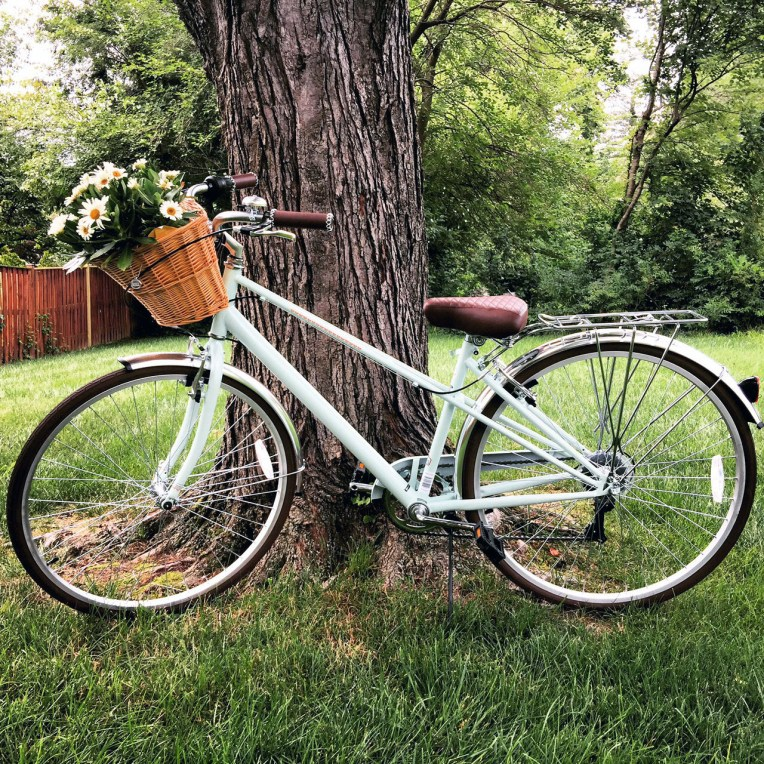 BikewithFlowers