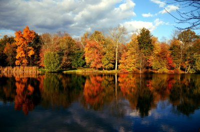 Autumn in New Jersey
