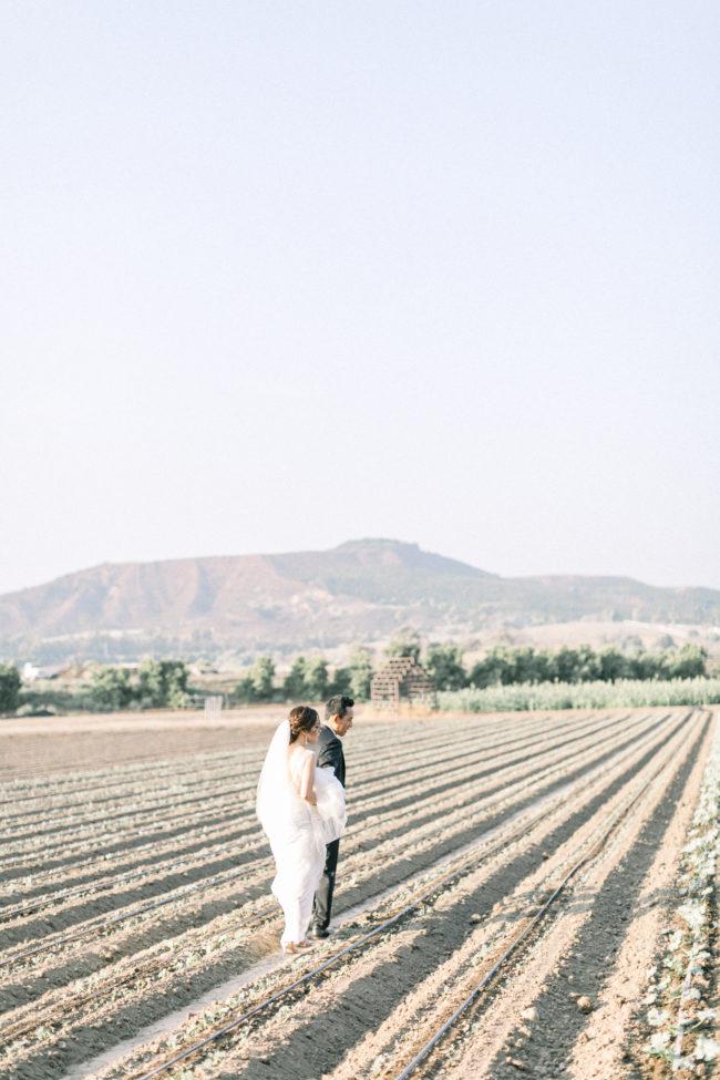 Stephanie Weber Photography, Orange County Wedding Photographer
