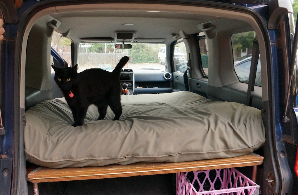 Dogs and Honda Element Bed Platform  Steph Davis  High