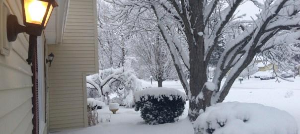 Wintertime - February 2013