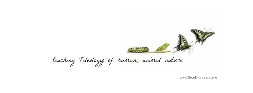 Teleology of Human Animal Nature