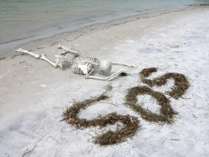 Skeleton-SOS-on-Beach
