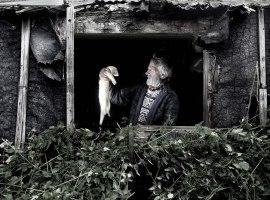 Yorkshire ferret breeder