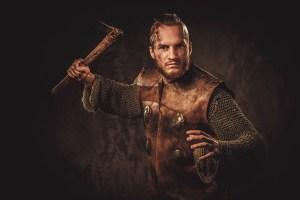 Stormforge - Viking Image