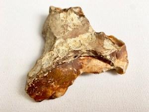 Mesolithic Tranchet Axe