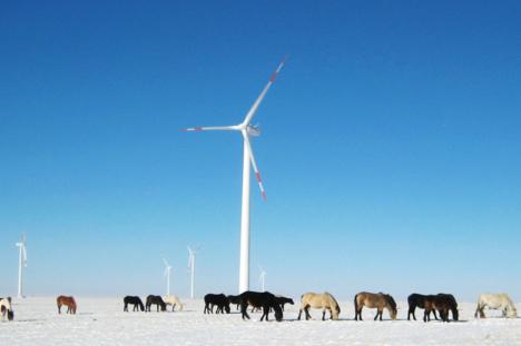 windmill-winter-ponies