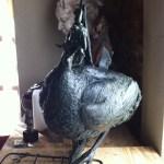 Wax sculpture, Guineafowl