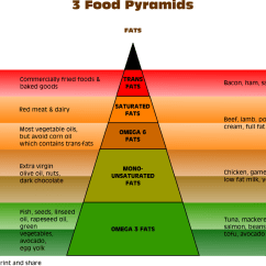 New Food Pyramid Diagram 2006 Honda Accord Headlight Wiring Is It Time For A Three Chart Below The