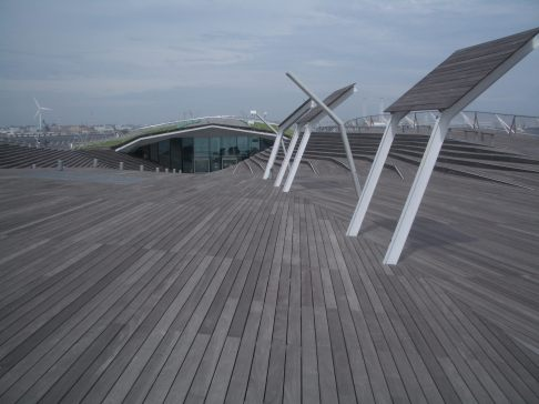 Yokohama Port Terminal by Foreign Office Architects 44_Stephen Varady Photo ©