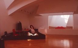 Vitra Design Museum by Frank Gehry 56_Stephen Varady Photo ©
