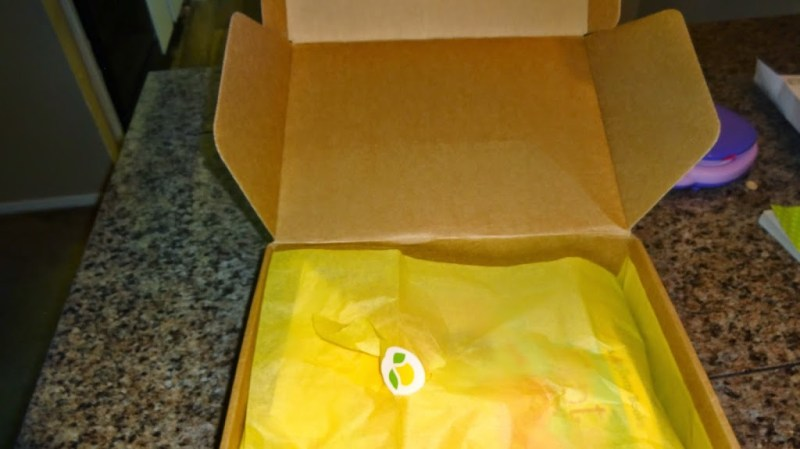 Citrus Lane June 2014 32 Month Girl Box Review by Ellie…