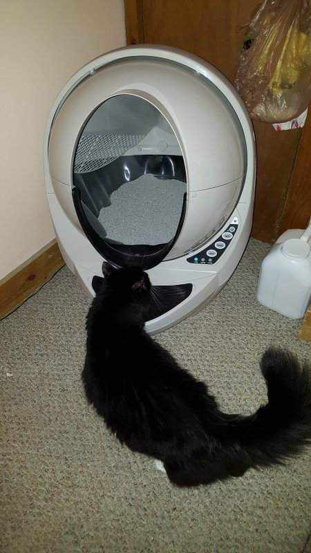 Holiday Gift Guide: Litter Robot