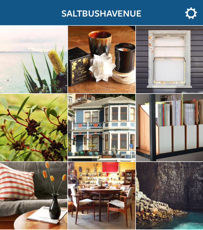 saltbushavenue instagram