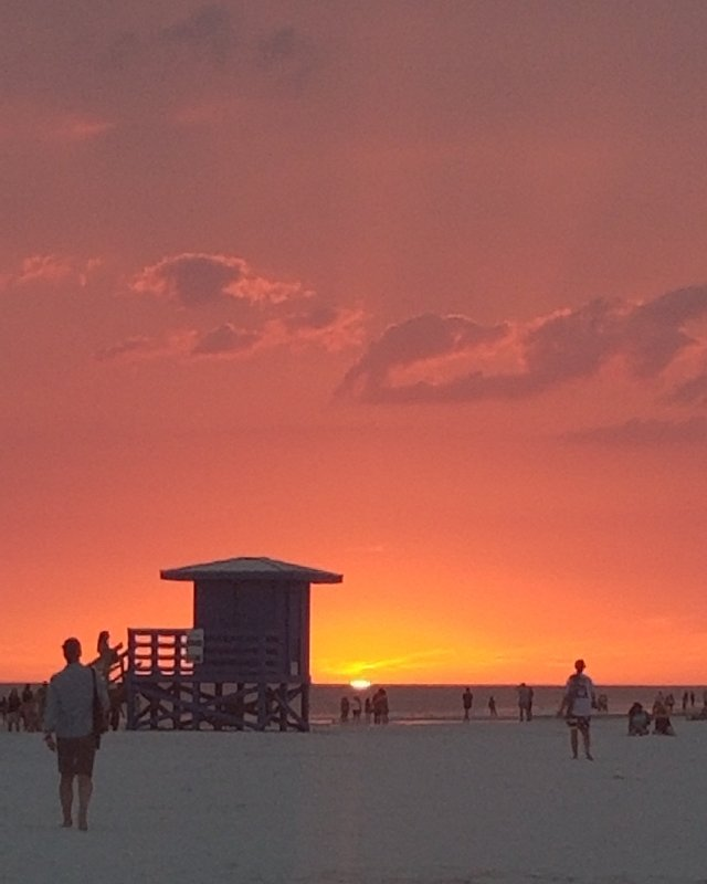 Sarasota Florida Sunset