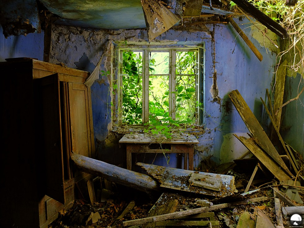 The Abandoned House 'What the Vines Are Hiding' (Poland) - 1