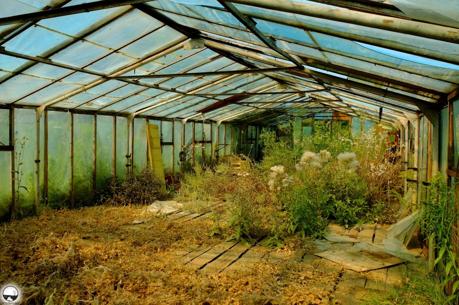 Abandoned greenhouses - 1.jpg