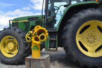 sunflowers tractor
