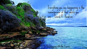 everything is you.david hawkins