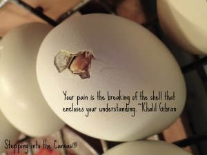 breaking of shell