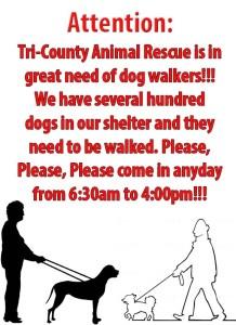 Tri-County Animal-Dog Walkers-95ccba19-1e31-4227-a538-09caed6db9b6