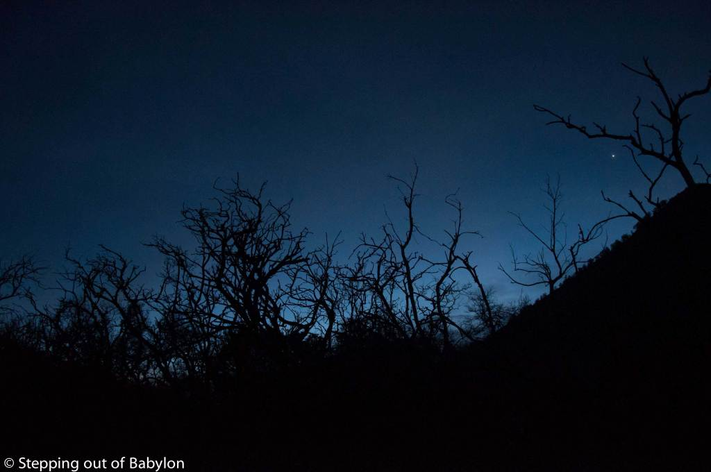 the way to Kawah Ijen at dawn