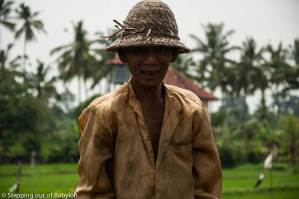 Ubud… temples and rice fields