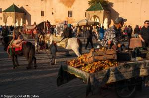 Meknes… the medina and the square