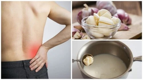 Image result for garlic and milk