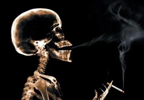 Табак и виноградные косточки