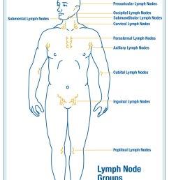 lymphedema stroke diagram [ 792 x 1224 Pixel ]