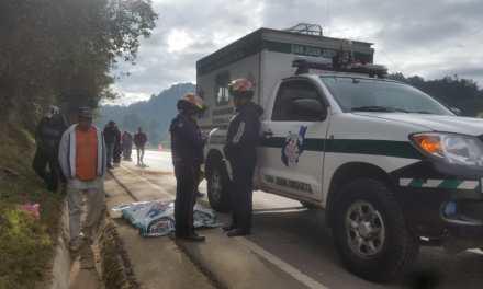 Hombre muere arrollado en la ruta Interamericana