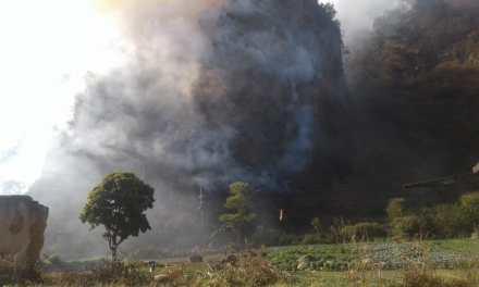 Incendio forestal afecta infraestructura eléctrica
